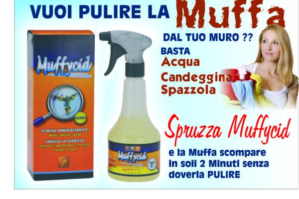 Elimina Muffa spray Muffycid ammazza batteri elimina in 5 minuti muffa fai da te !!! igienizzante sanificante  formula contro la muffa messina milazzo italia